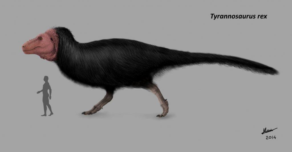 tyrannosaurus_rex___updated_version_by_moricemonkey93-d83n1sa